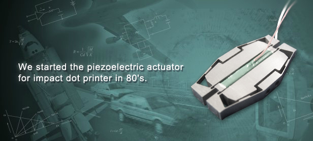 We started the piezoelectric actuator
