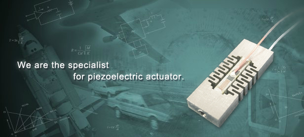 We are the specialist for piezoelectric actuator.